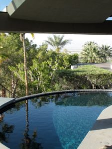 The gorgeous curved pool of the Elrod house