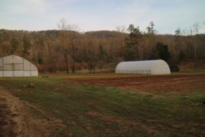 Most of Blackberry Farm's produce is grown in their fields. Blackberry Farm practices organic gardening. In this section are two hoop house for growing vegetables.