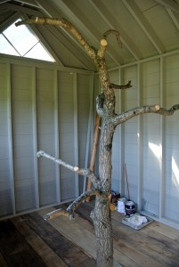 Another tree is placed on the other side of the coop - I love how natural elements can be used inside the structure.