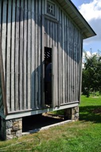 This is my old corn crib, where my Black Shoulder Pied peahen and Black Shoulder Silver Pied peacock reside.