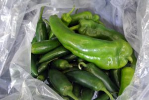 We harvested a big bag of hot peppers.