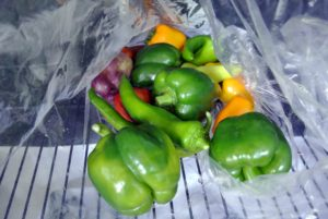 On the list - hot and sweet peppers in all different colors.