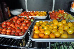 Next -- the yellow and orange tomatoes!