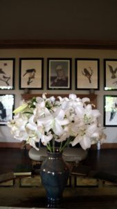 Pure white lilies, a late variety, were very pretty in an arts and crafts vase in the big living hall.