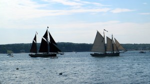 We watched the tall ships in the Sound from a friend's lawn.