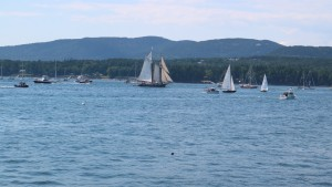 30-sailboats were expected to lead the parade, but unfortunately, we only saw a handful.
