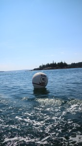 "We always know we're back in Seal Harbor when we see this buoy.  We always slow down when we see ""NO WAKE ZONE""."