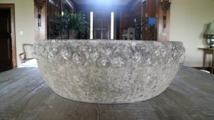 This is an antique stone planter I purchased from this year's annual Trade Secrets rare plant and gardening antiques sale.