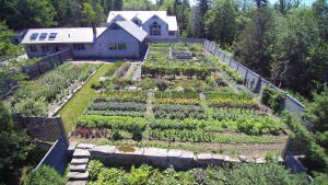 My garden has been growing very nicely this season. The soil is comprised of lots of red granite, and loam. It is also very well-drained and very fertile.