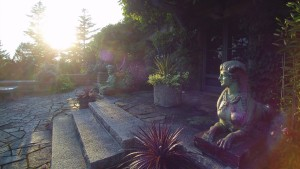 My two Emile Muller glazed terra-cotta sphinxes keep watch over the terrace and its many planted urns.