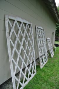 I found these antique trellises at an antiques show in East Hampton, New York - in a booth from Andrew Spindler Antiques. I knew they would look perfect hung on the back of the new peafowl coop. http://www.spindlerantiques.com
