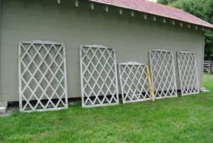 There are five trellises in all - four rectangular trellises measuring about five and a half feet long, and one shorter, more square shaped trellis measuring about three-feet.