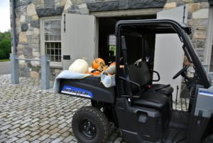 Several loads of pumpkins and squash were taken to my carriage house in our new Polaris Ranger. The big white pumpkin is 'Polar Bear'. It retains its color after maturity in the field, at market, and in decorative displays.