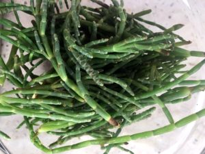 Sea Beans grow wild all over coastal North America, Europe, Asia, and Australia. Common names include glasswort, pickleweed, and samphire. Sea beans can be eaten raw or cooked. It has a salty flavor, with a fresh asparagus-like aftertaste.