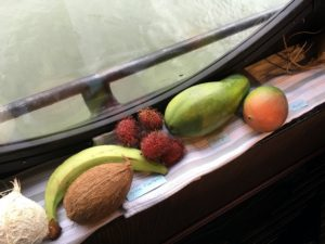 Other fruits included coconuts, green plantains, lychees, papayas, and mangos.
