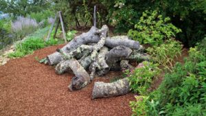 Here is another sculpture - parts of the magnificent oak tree have been piled up, lichens have grown on the wood, and the ground is covered with peach pits.