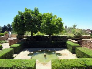 There were many fountains and orange trees everywhere in the garden.