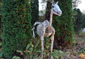 Here is another horse ready to greet any of the ghosts and goblins that come looking for treats.