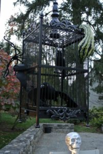 Ravens in their cage, also from my Martha Stewart Living line at Home Decorators Collection.