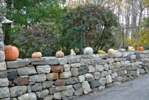We grew a lot of wonderful cucurbits this year. Take a look at this season's harvest - some are set right here, on the front wall.