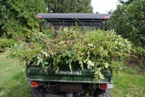All of the cuttings are placed into the Kawasaki, so they can be taken to the compost pile.
