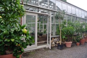 This special greenhouse was constructed several years ago and inspired by Eliot Coleman, an expert in four-season farming.