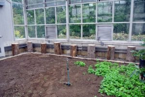 Here is one row of logs against the back wall of the greenhouse - each spaced about two-feet apart.