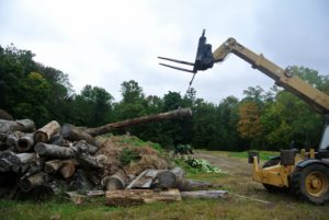 Using the Hi-Lo forklift, Chhiring lifted a log out from the pile.