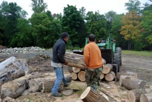 Pete and Chhiring then loaded the cut logs onto the tractor.
