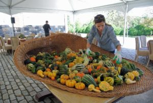 Art stylist, Agnes Rethy, fills the cornucopia with lots of gourds and small pumpkins. A cornucopia, from the Latin cornu copiae or horn of plenty, is a symbol of abundance and nourishment. It is commonly a large horn-shaped container overflowing with produce.