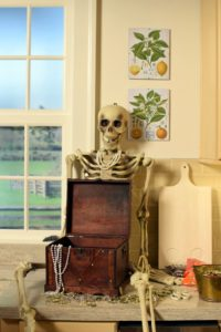 The skeleton is also from Home Decorators Collection and part of our Martha Stewart Halloween line.