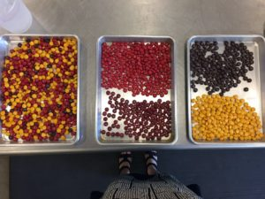 We have delicious milk chocolate M&Ms in all kinds of autumn colors - red, brown, yellow and a multi-colored combination.
