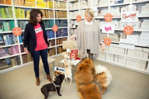 My dogs, GK, Peluche, Bete Noire, and Creme Brûlée, also attended American Made and participate in a Facebook LIVE with me and Danielle Barran from Milk-Bone.  (Photo by Mike Krautter) https://www.milkbone.com/