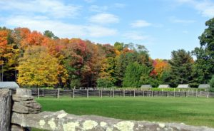 More autumn color across one of my paddocks - my chicken coops are on the right.