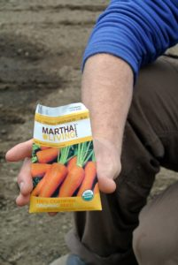 "Ryan planted my ""Danvers"" carrots - rich, dark orange carrots that grow six to eight inches long."