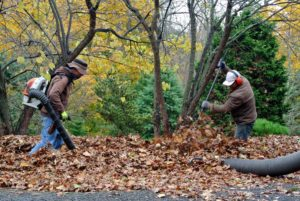 Another mound of leaves is being collected behind my Equipment Barn.