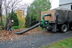 This powerful machine removes even the smallest leaf particles. Phurba and Dawa move the debris closer to the hose opening, so the vacuum takes in the leaves and transports them into the bed of the truck.