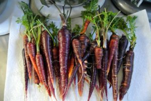 Here are the carrots, all nicely washed.