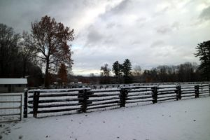The upright posts are newer and made of cedar. This fencing is what surrounds all my paddocks at the farm. Guests love the old fencing, and often comment on it during tours.