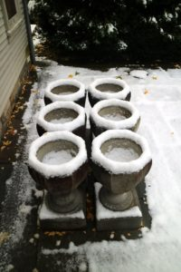 Six stone urns behind my Summer House - they will soon be wrapped for the winter.