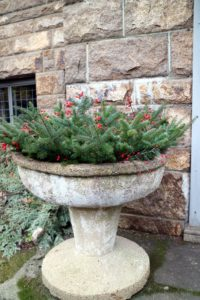 This is one of a pair of giant urns I had transferred to Maine from my Bedford, New York farm this summer. The two now flank the front entrance of Skylands. Each weighs several hundred pounds. For the holiday season, we filled them with festive evergreen branches and red winterberries.