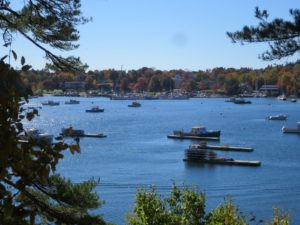 This is Northeast Harbor where many sailboats are found in summer. It's been a most stunning fall. I am looking forward to spending the Thanksgiving holiday in Maine with my family.
