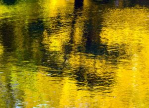 The yellow color reflecting off the water is breathtaking.