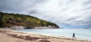 Dr. Knapp used a Leica S (Typ 007) medium format DSLR camera. His photos are just stunning. This photo was taken at Sand Beach in Acadia National Park on Mount Desert Island.