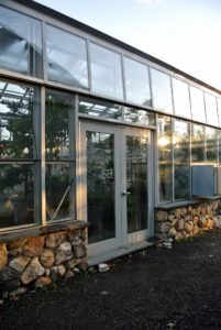 I love this vegetable greenhouse down behind my Equipment Barn. It uses minimal artificial heat, where many cold hardy crops can be grown and harvested through the winter. Its construction a few years ago was inspired by Eliot Coleman, an expert in four-season farming.