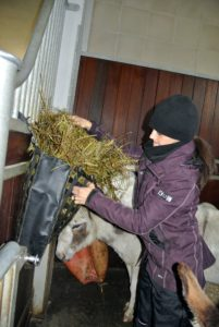 They also get a good amount of fresh hay in their stall for the evening.