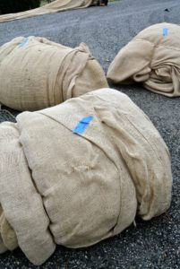 Because the burlap covers are custom fitted for each hedge and shrub, any burlap cover from past seasons is labeled, so it can be reused in the same exact location the following year.