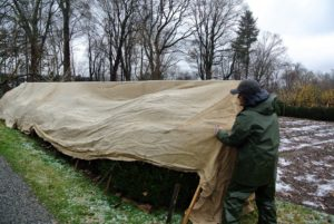 Chhiring carefully covers the end of the hedge and makes sure it is covered equally on all sides.