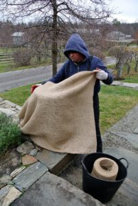 Wilmer wraps the burlap around the plastic covered urn.