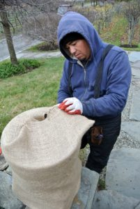 Once the burlap is secured underneath, Wilmer begins working on the rest of the urn - pulling the burlap snug around the container.